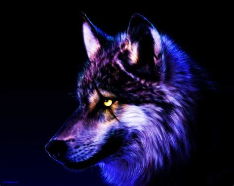 wolf wallpaper pinterest cool purple wolves unusual fixed wolf wallpaper by