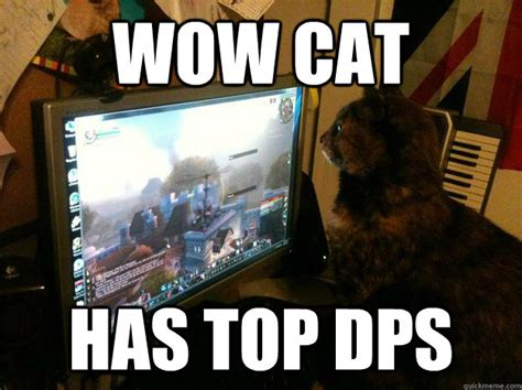 Funny Wow Memes - wow cat memes quickmeme