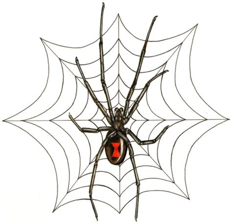 spider web tattoo design outstanding inspirational spider web designs
