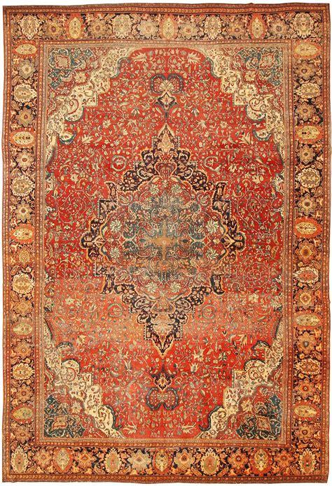 persian carpet hawk haven