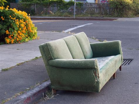 couch street local ecology blog local ecologist this is not eclectic