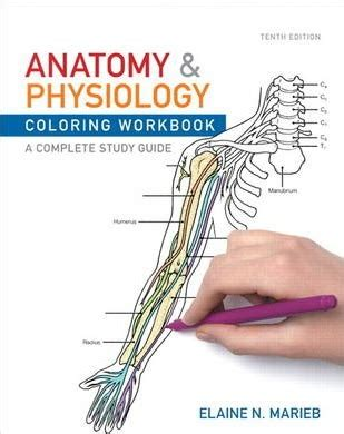 anatomy coloring workbook answers chapter 3 anatomy and physiology coloring workbook answers