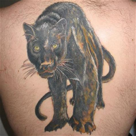 tattoo fail panther panther tattoo meanings itattoodesigns com