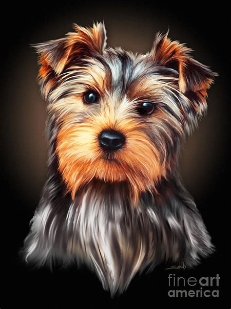 yorkie painting yorkie portrait by spano painting by michael spano