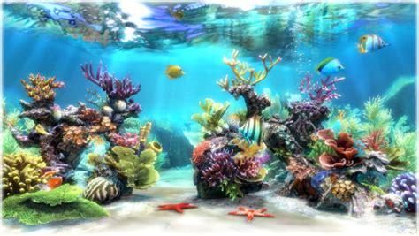 sim aquarium virtual aquarium, screensaver and live