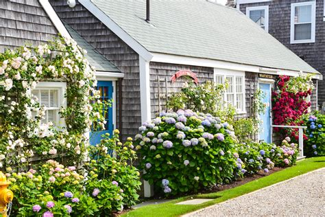 The Cottage Guide by Nantucket Guide 5 Things To Do Your Time Visiting