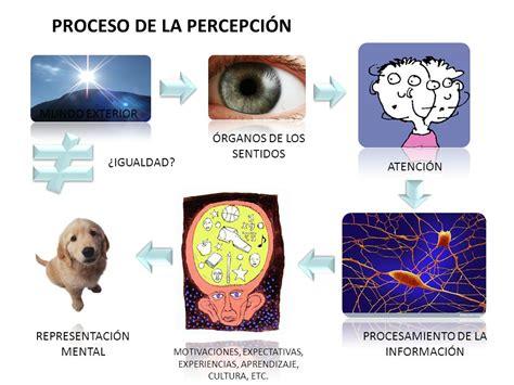 fechas para devolucion de percepciones percepci 211 n ppt descargar