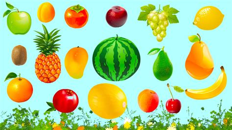 3 fruits name learn fruits for fruits names in