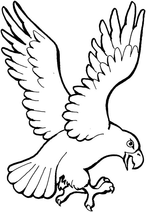 coloring page eagle flying free eagle coloring pages