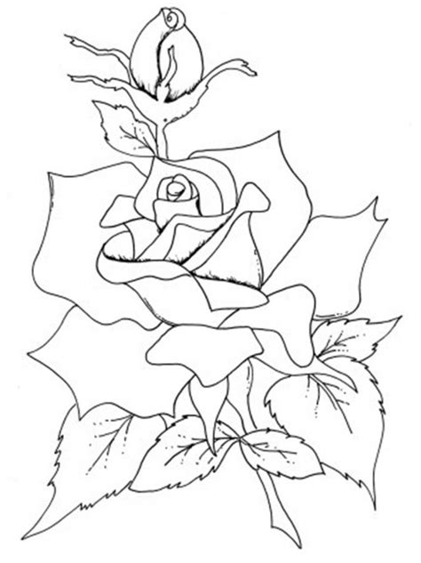 realistic rose coloring page tiger shark coloring page coloring home