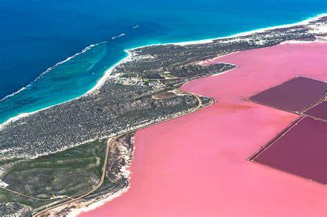 pink lake the pink lake 171 gary pepper