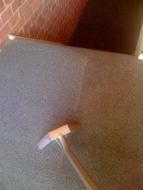 upholstery cleaning maryland maryland carpet cleaners carpet ideas