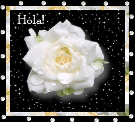 imagenes de hola romanticas im 225 genes de hola rosa blanca