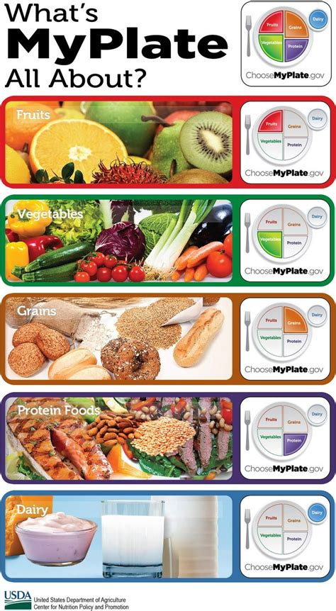 my vegetables my vegetables books 52 best images about my plate on diabetes in