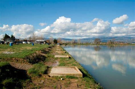 lago möbel il lago borghese secondo andrea canaccini