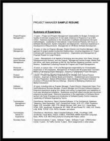 Resume Summary Examples For Students Resume Summary Examples For Student Alexa Resume