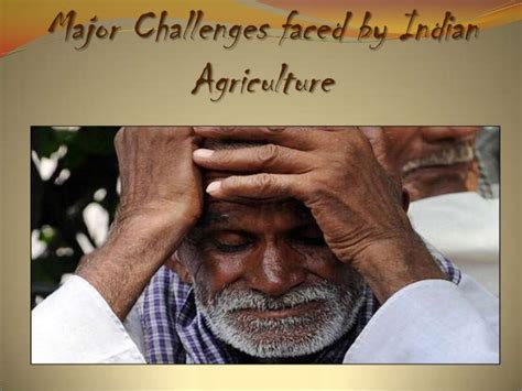major challenges before indian economy population agriculture in indian economy vishnu pujari