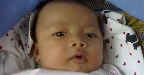 perkembangan bayi usia 8 bulan priyayialitblogspotcom perkembangan bayi usia 11 bulan