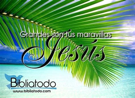 imagenes cristianas grandes imagenes cristianas grandes son tus maravillas