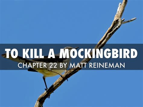 theme of to kill a mockingbird chapter 7 to kill a mockingbird chapter 22 by matthew reineman