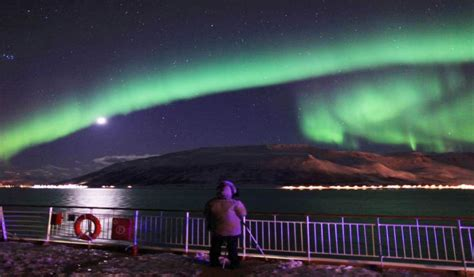 hurtigruten excursions northern lights classic 12 day norwegian coast round trip and the northern