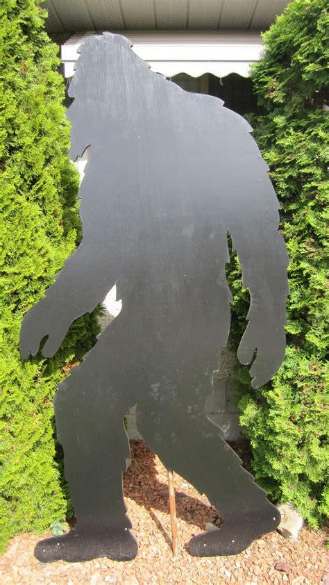 sasquatch bigfoot yard shadow pattern