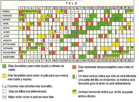 Calendario Lunar Para Cortar El Cabello La Influencia De La P 225 2