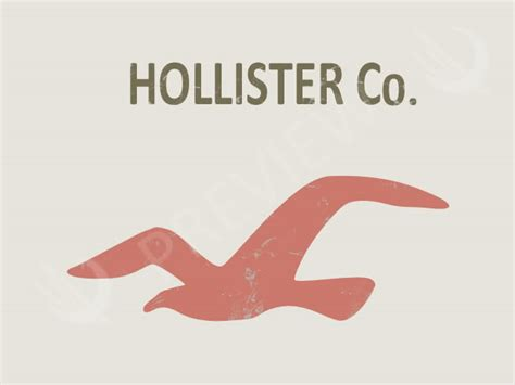 Hollister Logo Graphic Large hollister bird outline www pixshark images galleries with a bite
