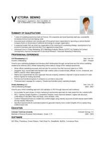 Vp Resume Sles by Vp Sales Resume Summary