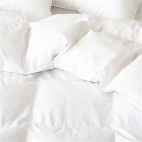 down duvet comforter brome duvet down comforter by cd bedding of ca