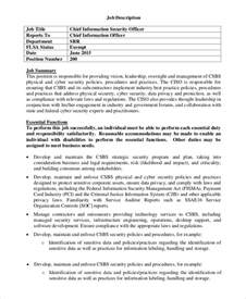 cto description this technical sales resume produced