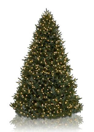 Balsam Hill Tree - balsam hill trees
