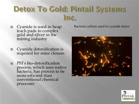 Detox Systems Inc by Detox T To Gold 2 Version