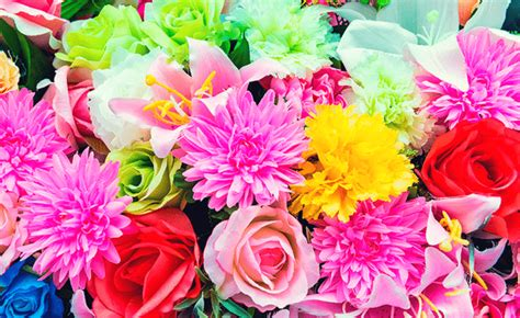 significato dei fiori conoscere il loro linguaggio