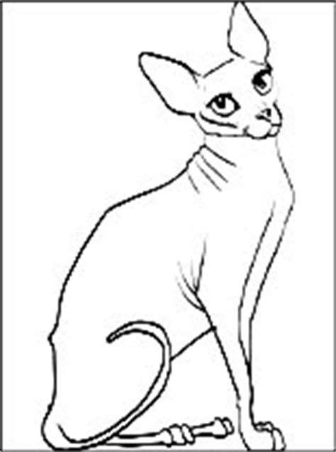 sphynx cat coloring page coloring pages