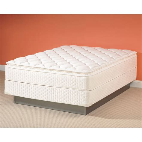 bed box spring queen sealy low queen box spring sears