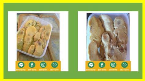 Alamat Jual Bibit Durian Musang King Di Medan 081910081601 alamat durian montong alamat durian musang