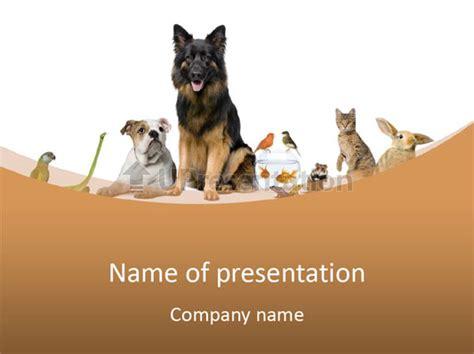 Powerpoint Templates Animals Powerpoint Templates Animals Sweatsweat Template Hotel Rez Info Animals Powerpoint Template