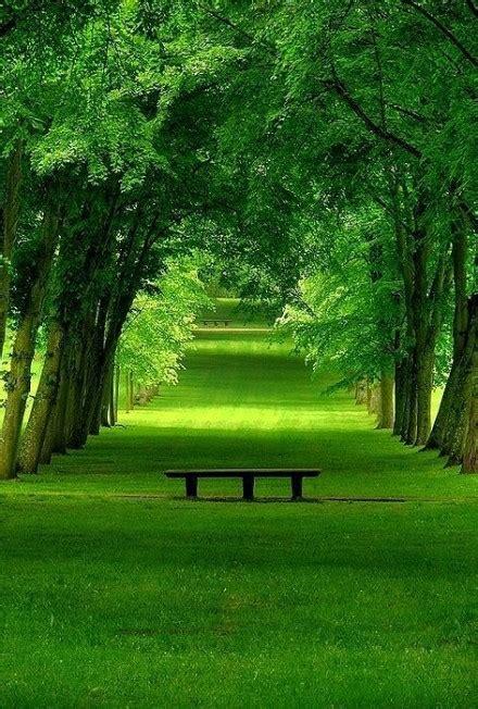 imagenes de paisajes que den paz la paz todo llega todo pasa y todo cambia