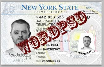 New York Id Card Template by Template New York Drivers License V2 Template Photoshop