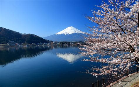 beautiful japanese landscapes