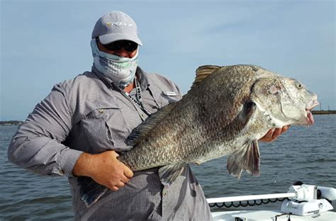 best fishing boat for galveston bay capt lambert galveston bay fishing report coastal