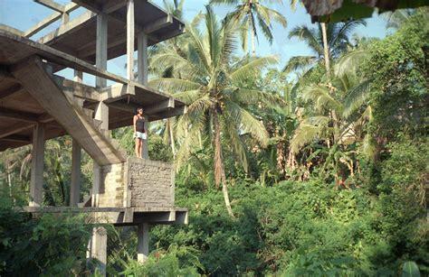 Concrete Jungle Forest Concrete Jungle