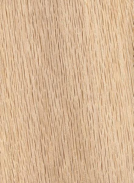 water oak  wood  lumber identification
