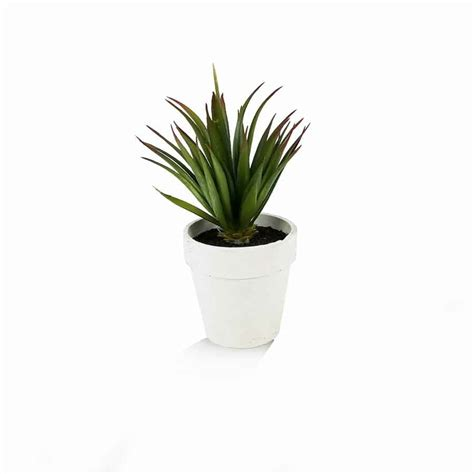 agave in vaso vaso agave artificial 18cm nature flores