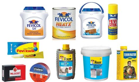 products on pidilite industries company profile business details financials