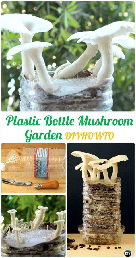 diy plastic bottle garden projects ideas gardening viral
