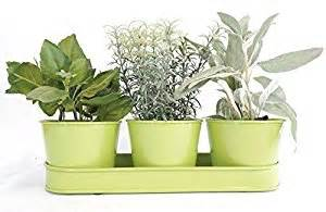 windowsill planter indoor amazon com windowsill planter indoor green galvanized