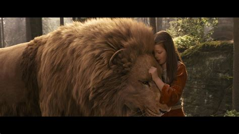 aslan the from narnia and aslan a narnia tribute in pictures