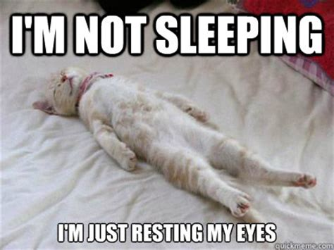 Sleeping Cat Meme - i think i ll have a nap scientific scribbles
